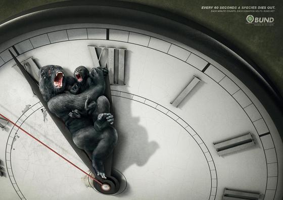 propaganda meio ambiente animais espécie extinção relógio 60 segundos