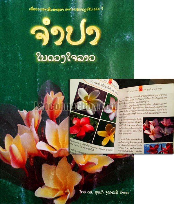 Lao book review:  Champa - written in Lao