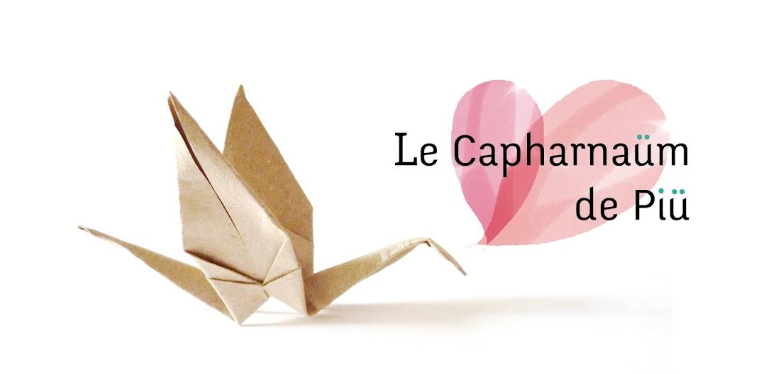 Le Capharnaüm de Piü