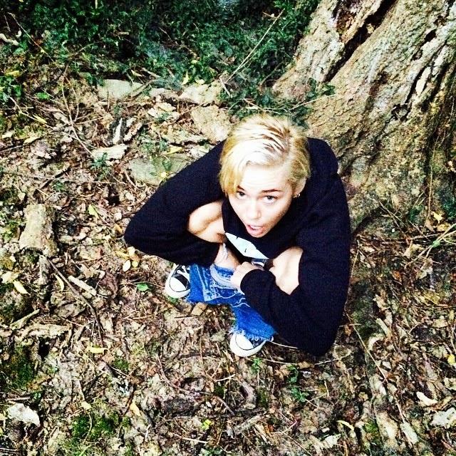 Miley Cyrus orina bajo un árbol