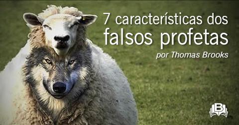 Resultado de imagem para O que a Bíblia diz sobre falsos profetas?