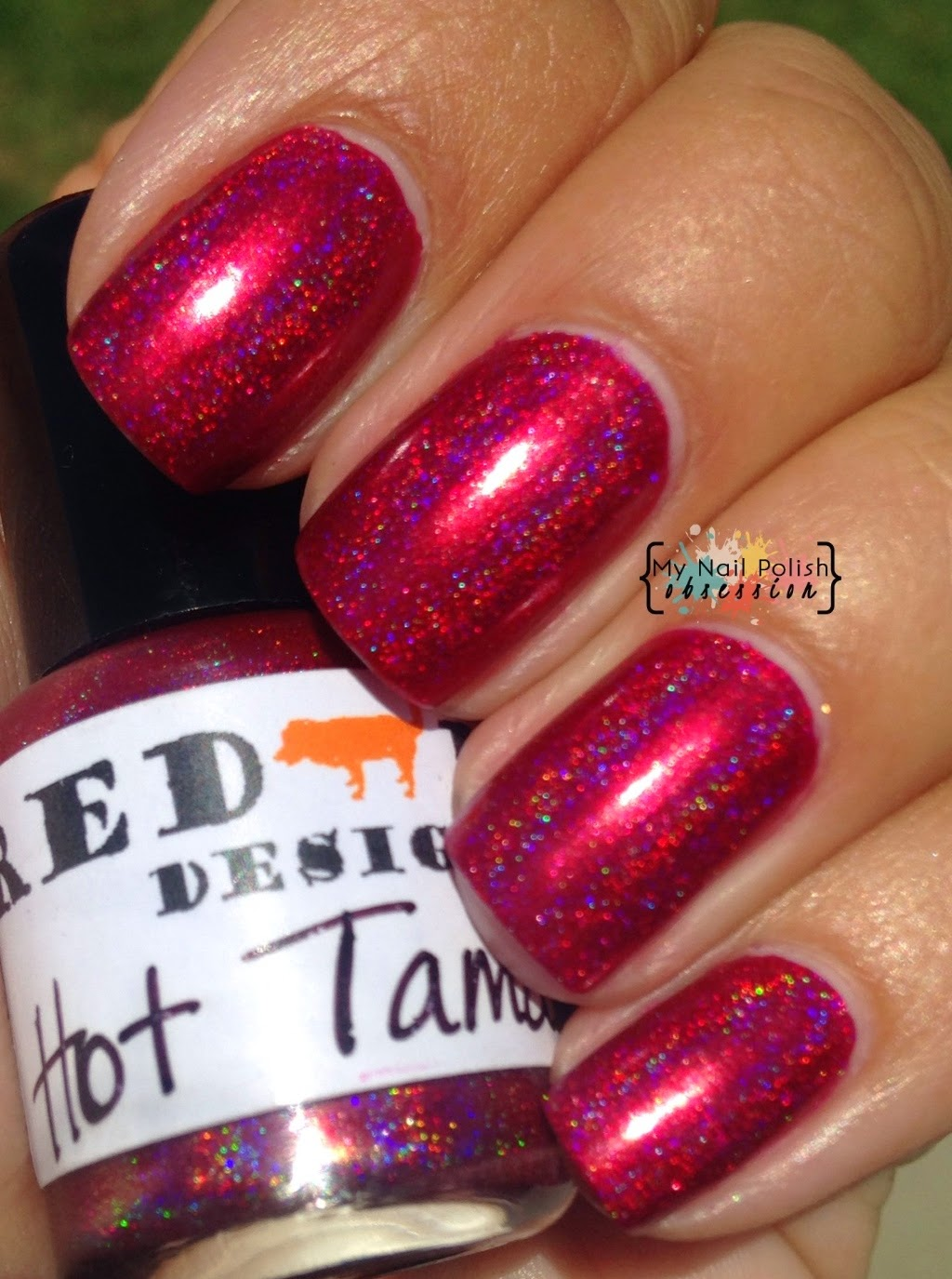 My Nail Polish Obsession: Red Dog Designs Hot Tamale