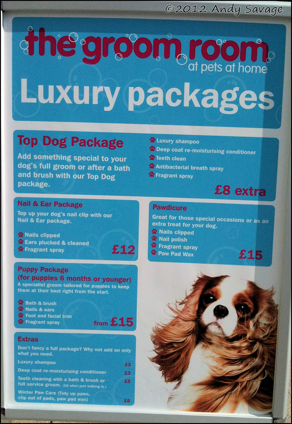 www.derbyphotos.co.uk - The blog by Andy Savage: Pets at Home ...