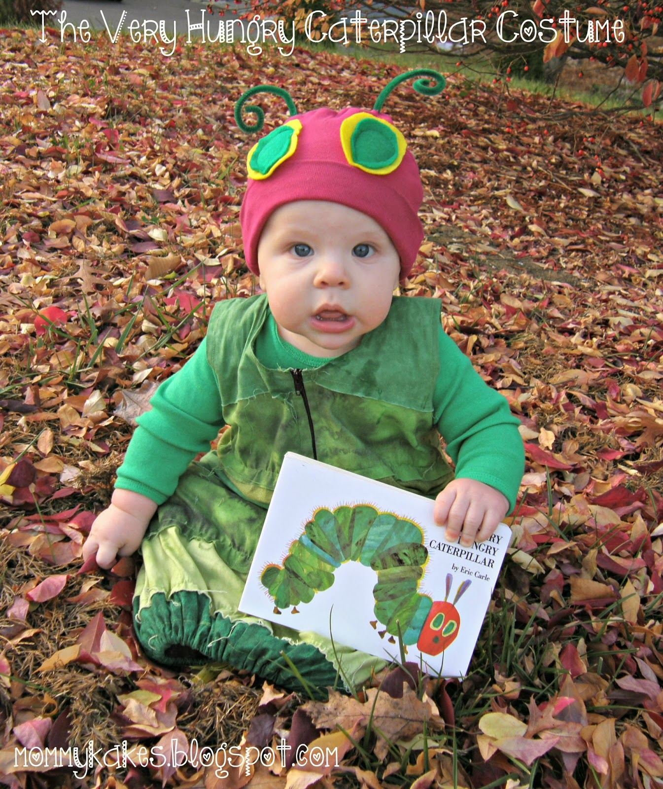 The Very Hungry Caterpillar Costume  sc 1 st  Mommykakes & Mommykakes: The Very Hungry Caterpillar Costume