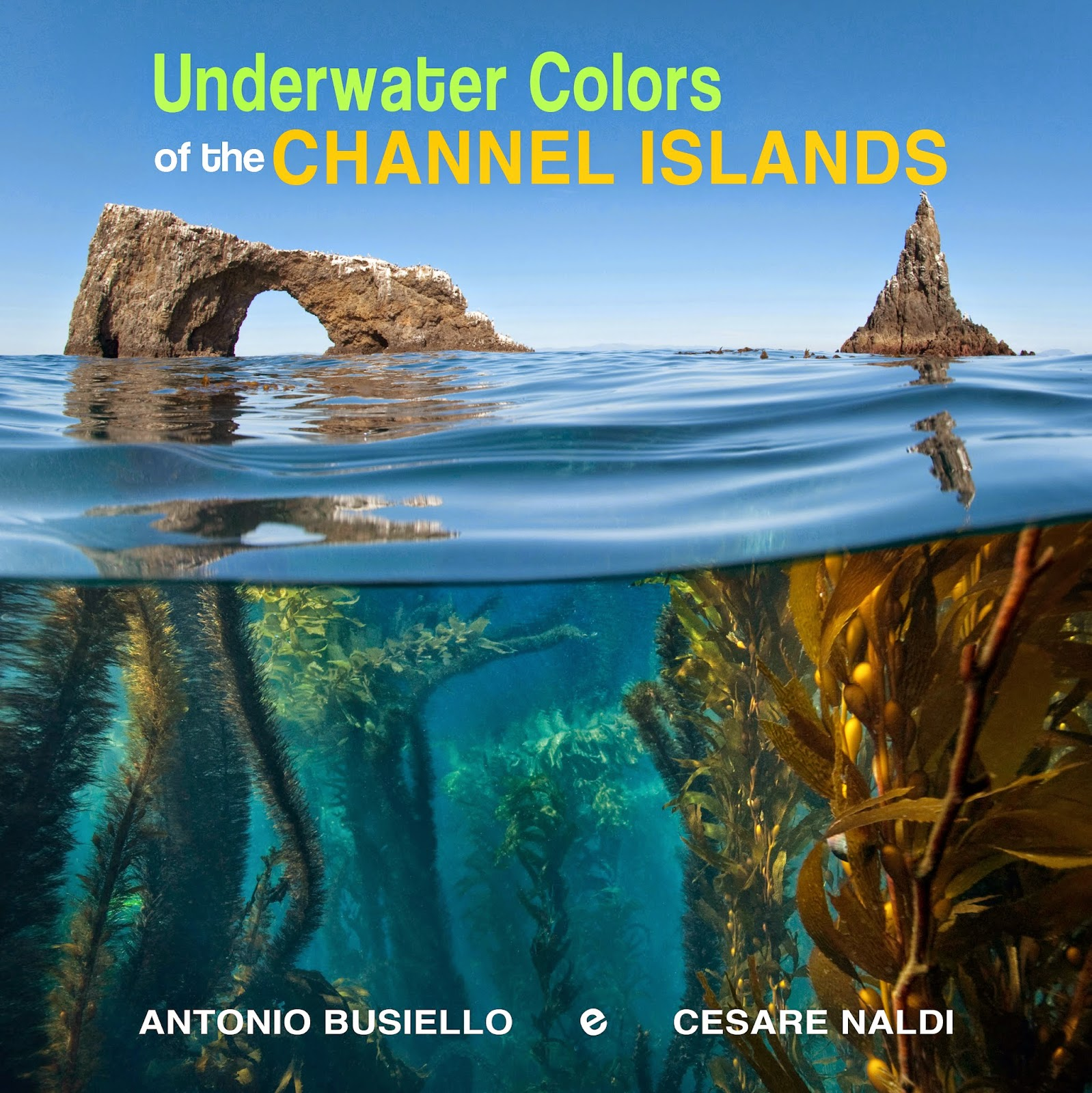 https://www.kickstarter.com/projects/channelislandsbook/underwater-colors-of-the-channel-islands-0