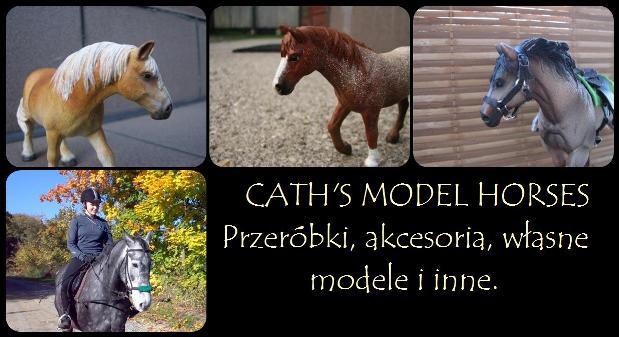 Akcesoria, przeróbki, własne modele i wiele więcej.