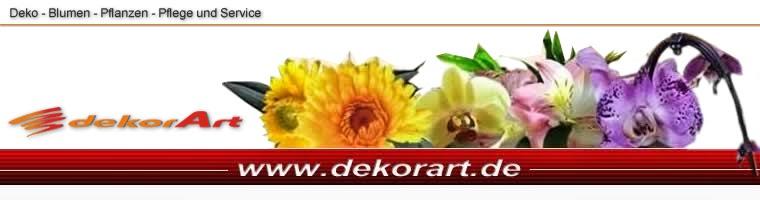 dekorart - Deko - Blumen - Pflanzen - Pflege und Service
