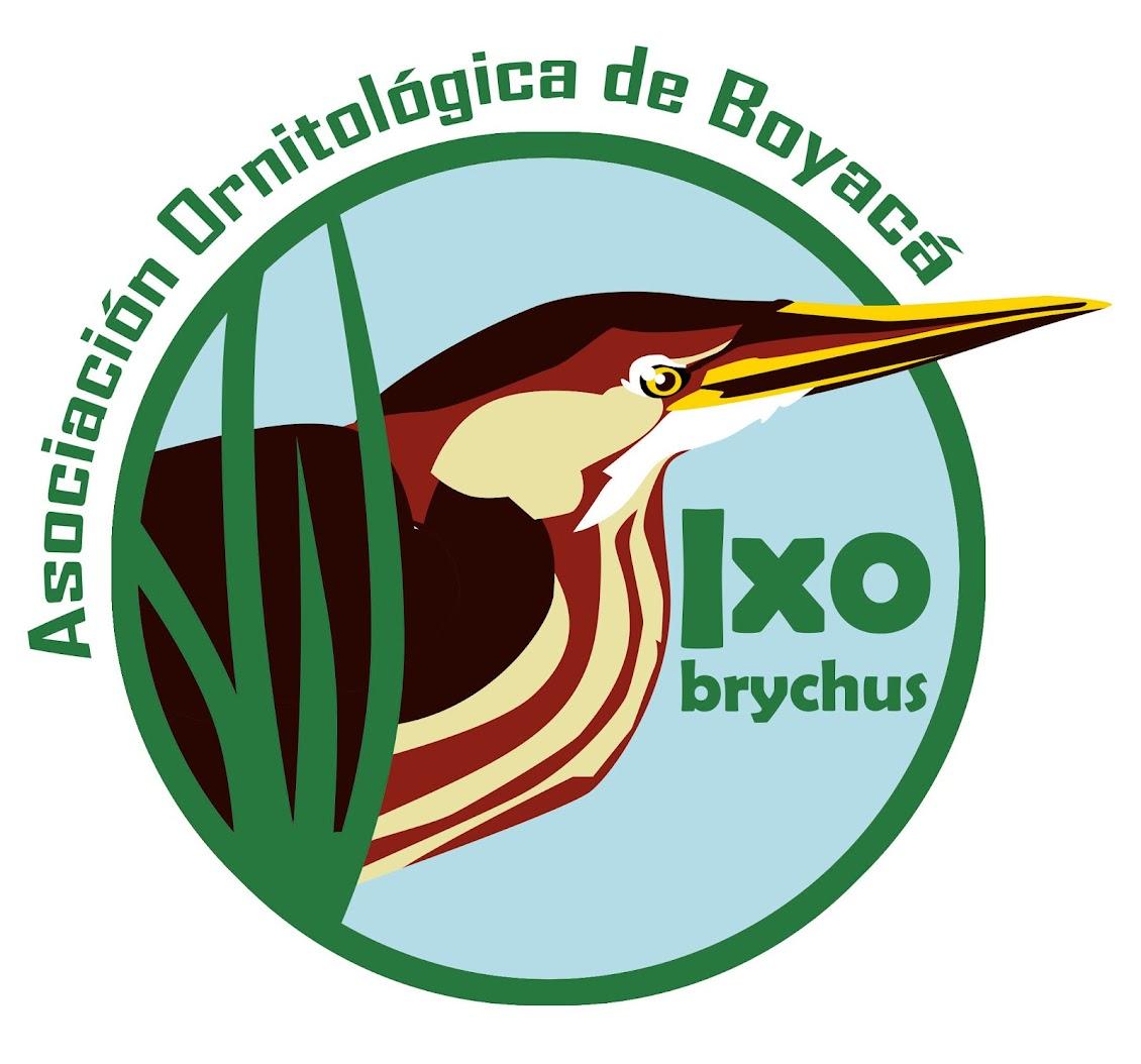 Asociación Ornitológica de Boyacá-Ixobrychus