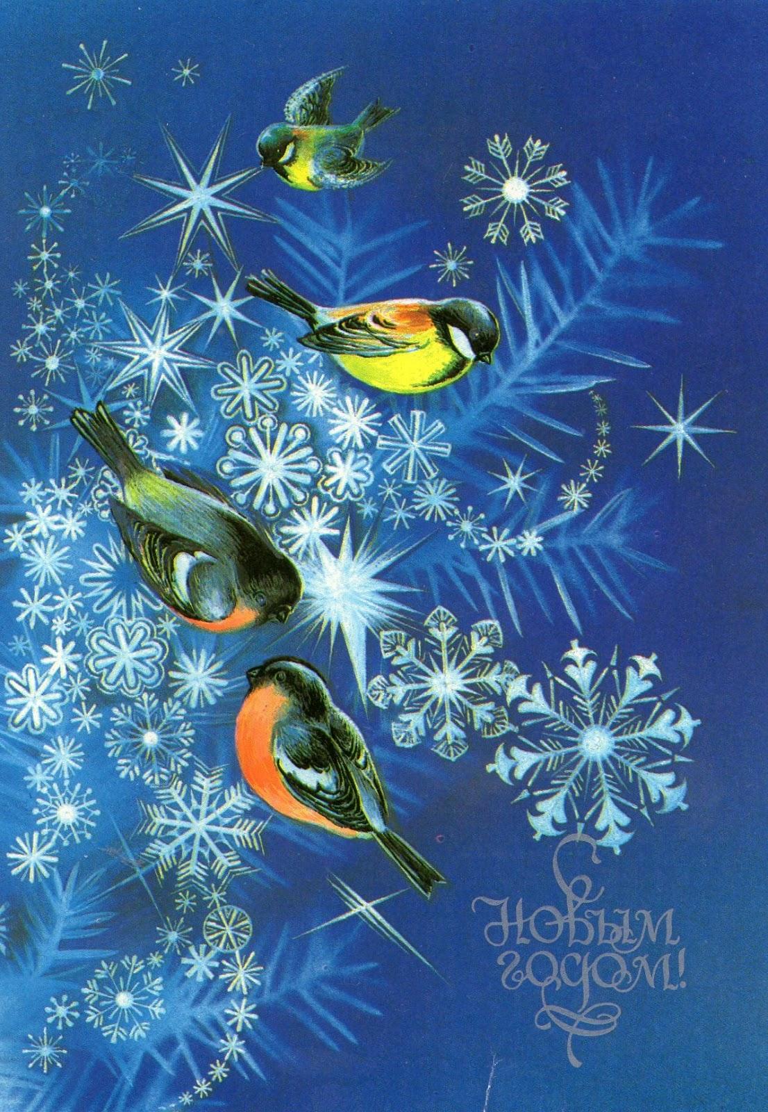 Зимние игры для детей Зимние игры на свежем воздухе