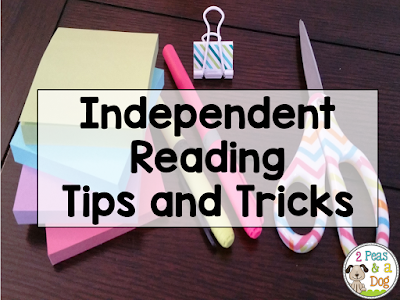 Tips and Tricks For Helping Students Retain a Love of Reading