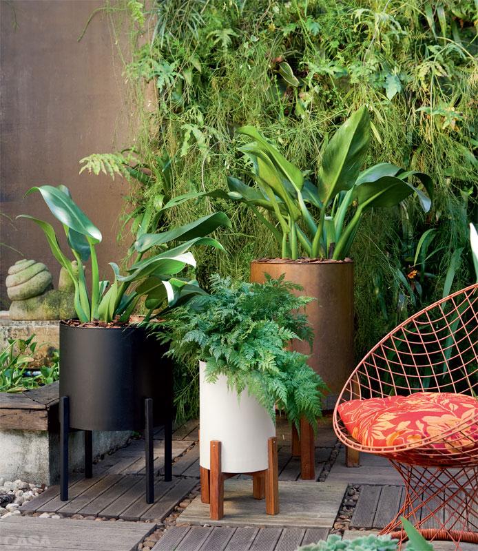 plantas jardins vasos : plantas jardins vasos: complementam as diferentes espécies de plantas e modelos de vasos