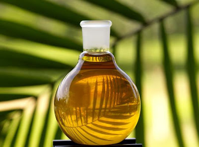 Hidden Nutritional health benefits of Palm Oil