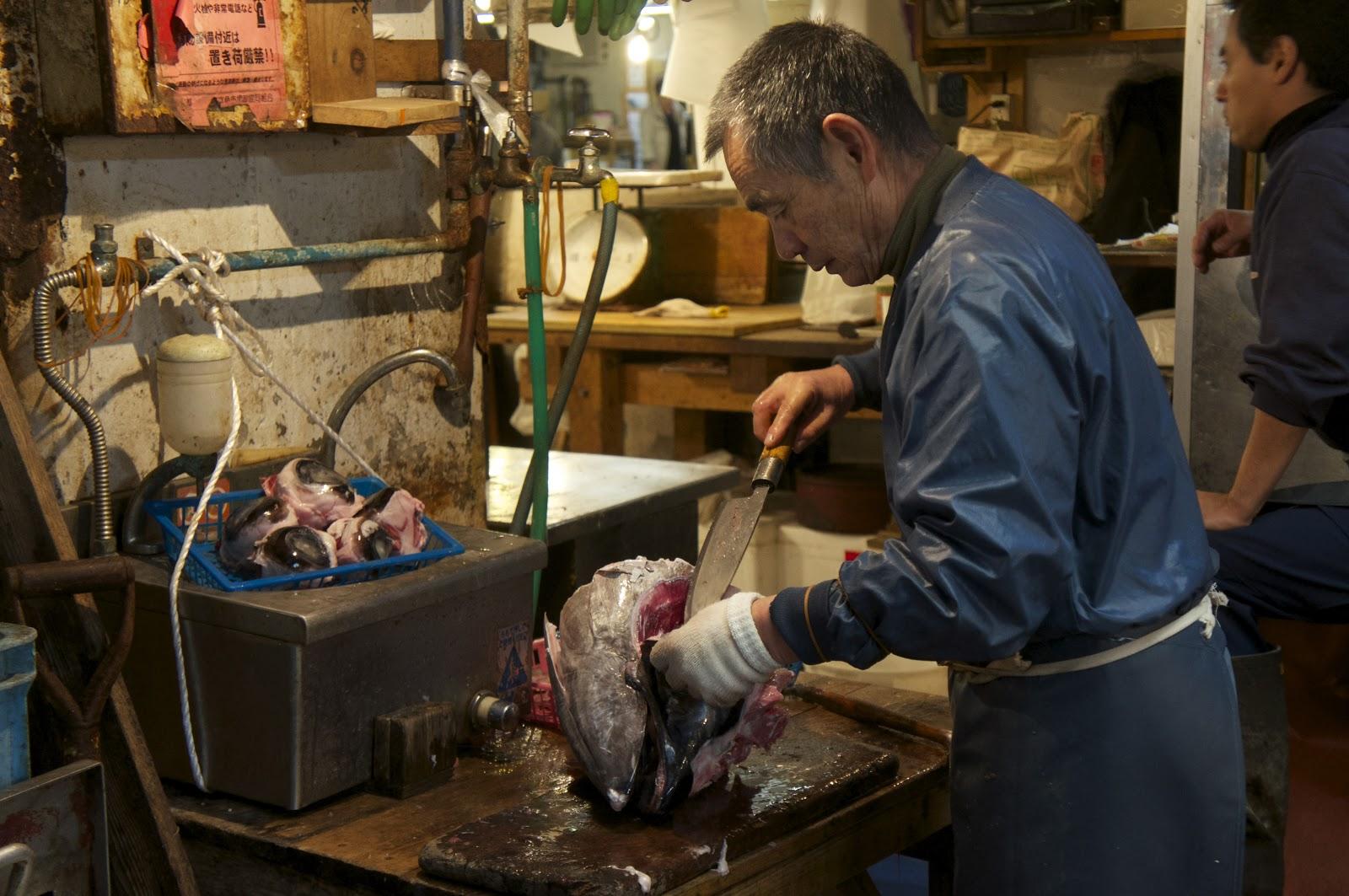 Denae d 39 arcy tsukiji fish market for Fish market hours