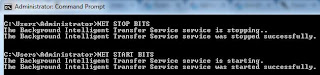 Net start stop service