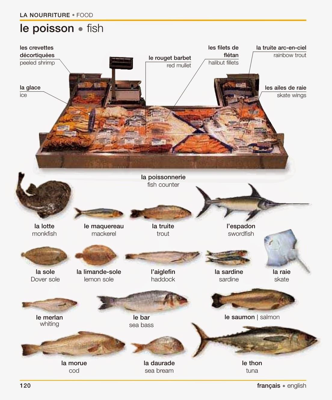 La nourriture for Nourriture a poisson