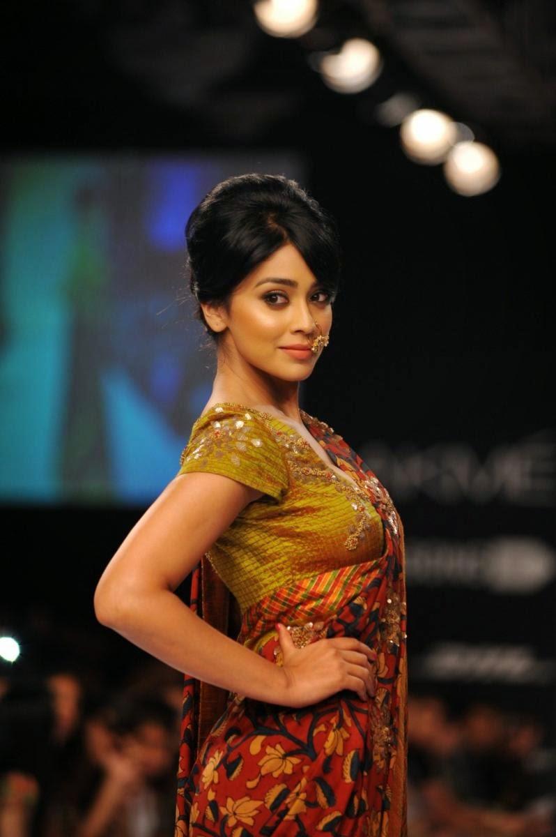 Actress shriyA SARAN SAREE PHOTOS