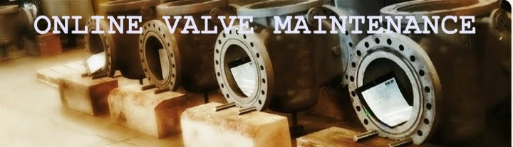 Online Valves Maintenance and Products