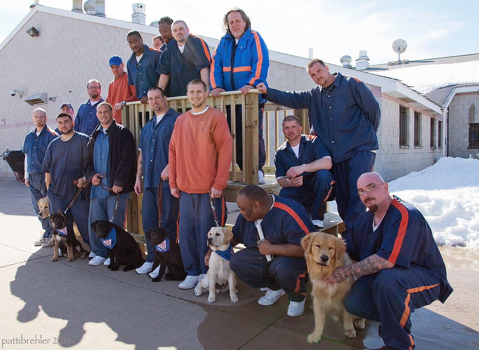 A group of 16 men and six dogs post on a newly built wooden staircase. The stairs are on either side of a platform with railings. It is a bright sunny day in the prison yard, there is still snow on the ground in the background.