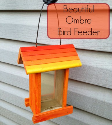 Beautiful Ombre Bird Feeder Home Crafts By Ali