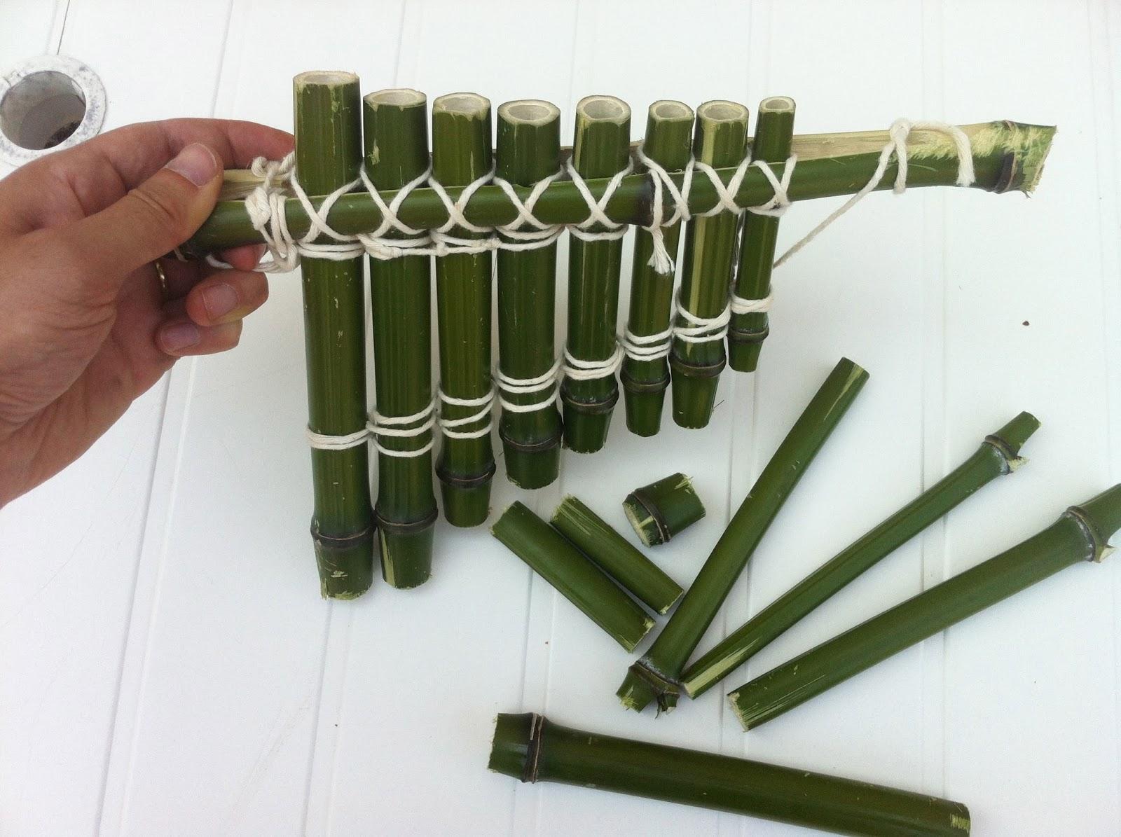 Que peut on faire avec du bambou maison design mail for Que peut on faire avec du bambou