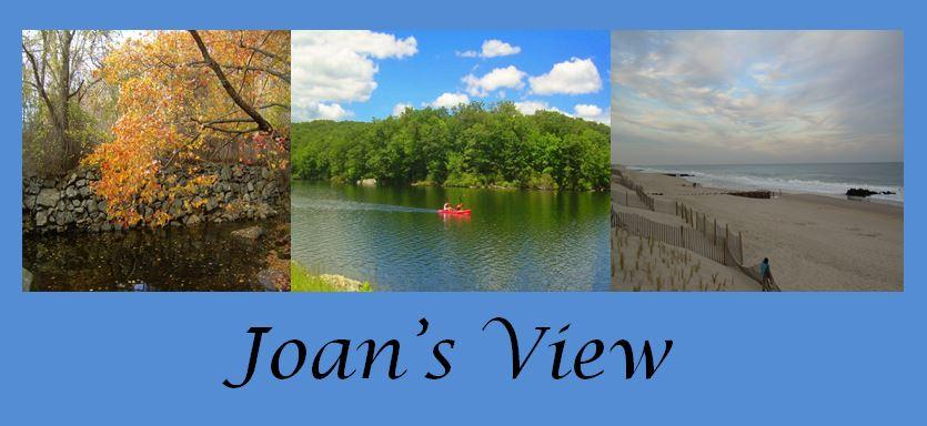 Joan's View