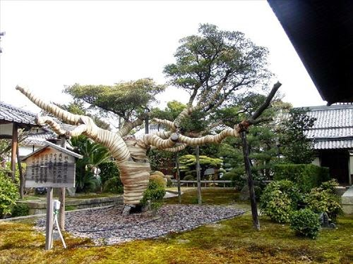 海宝寺(かいほうじ)