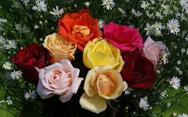 #10 Spectacular Flowers Images for Desktop