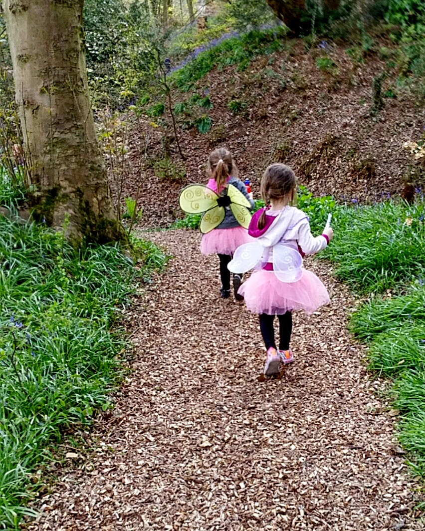 fairies in the woods