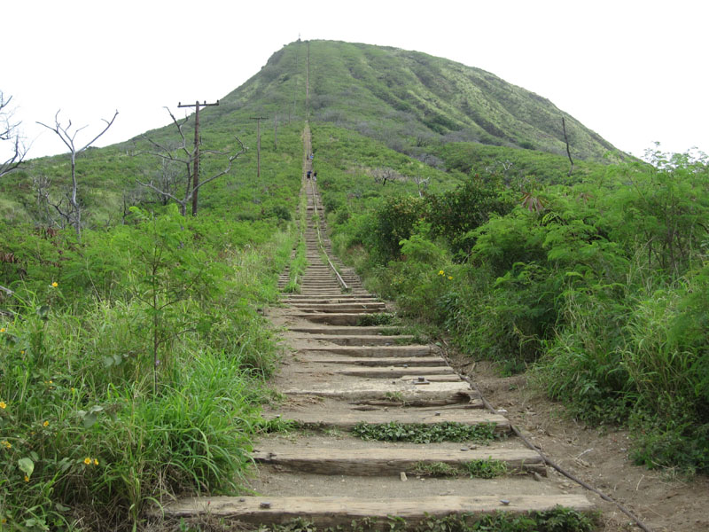 koko head height