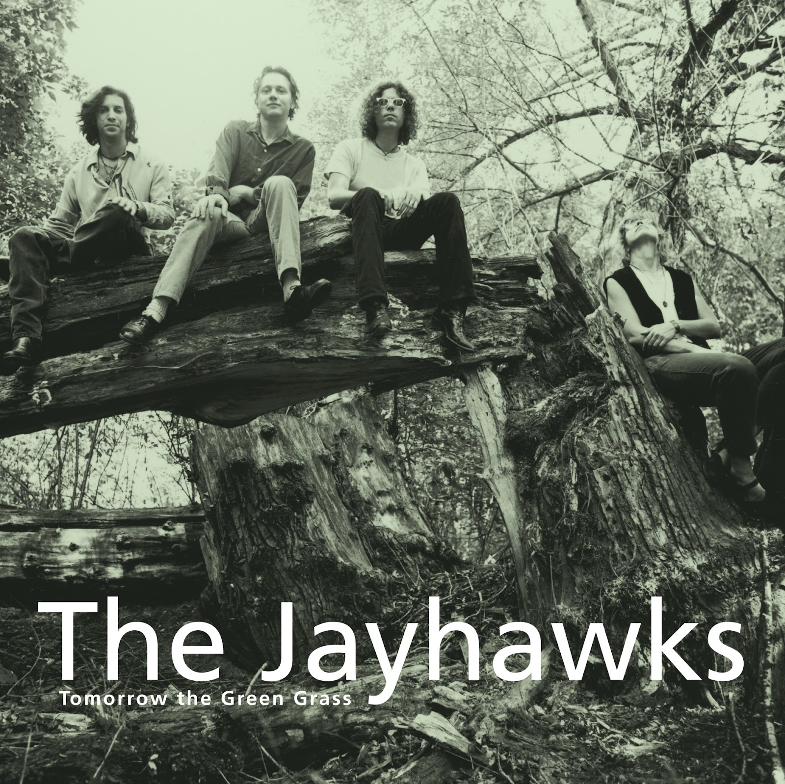 The Jayhawks Net Worth