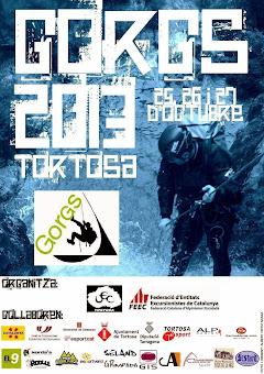 GORGS Tortosa 2013