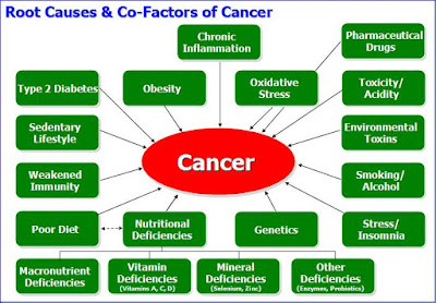 Cancer Causes & Risk Factors