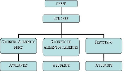El blog de mi master el organigrama de la cocina for Areas de la cocina y sus funciones