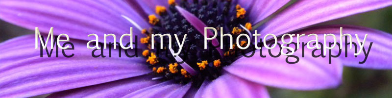 Photography and Me