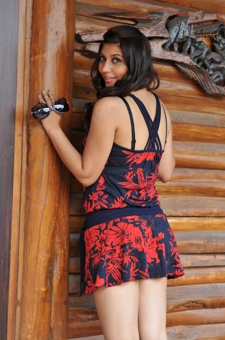 sara sharma actress pics