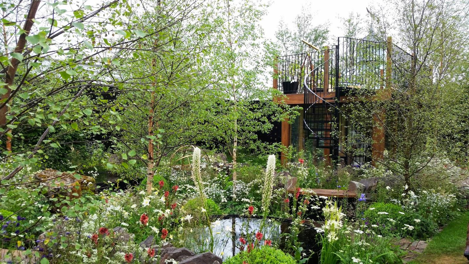 kelli u0027s northern ireland garden chelsea photos part 1