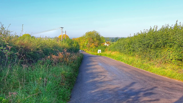Project 365 2015 day 285 - Hill repeats // 76sunflowers