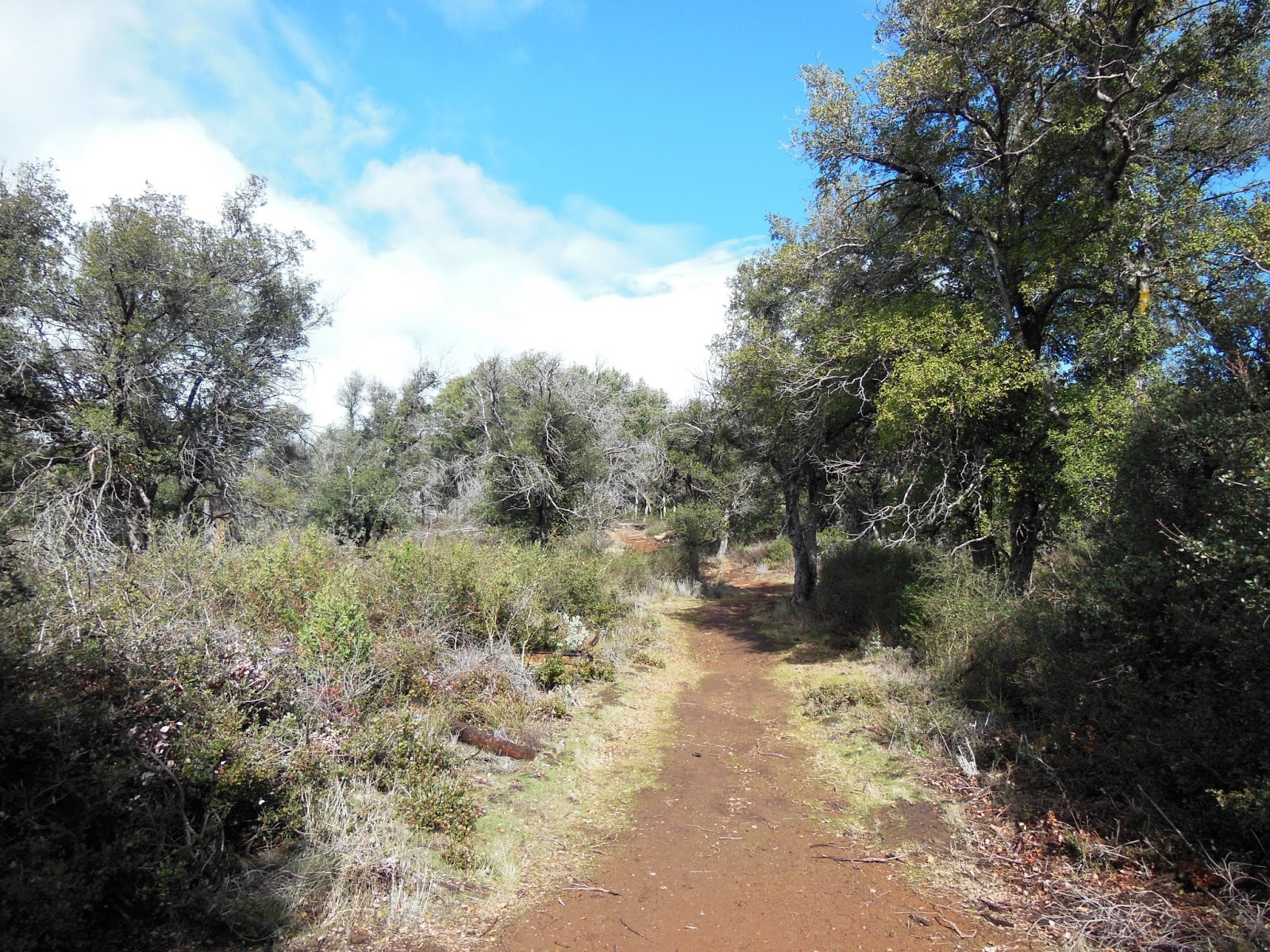 brian and ashley s hiking blog william heise county park canyon