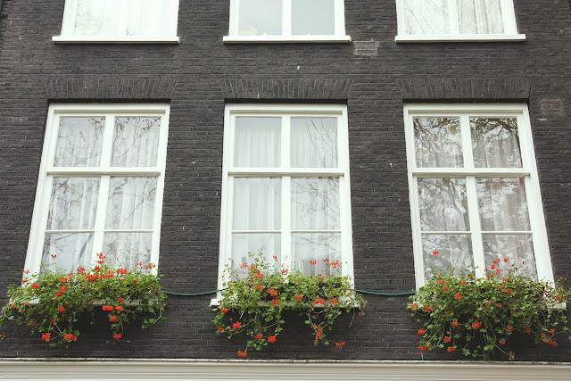 speculoos. | biciclette, fiori e cannella: amsterdam.