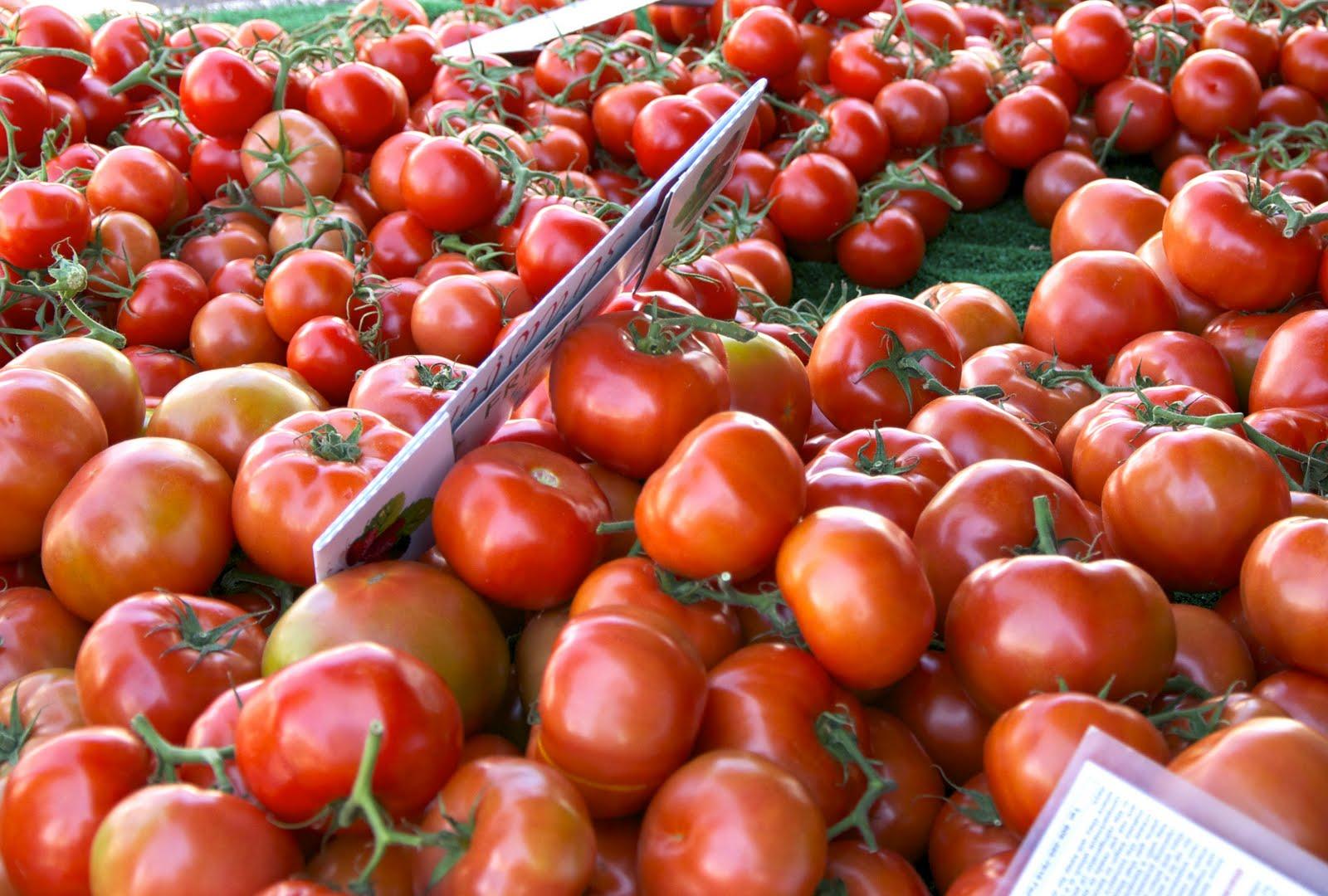 Happy healthy belly sample menu food combining sample menu food combining forumfinder Choice Image
