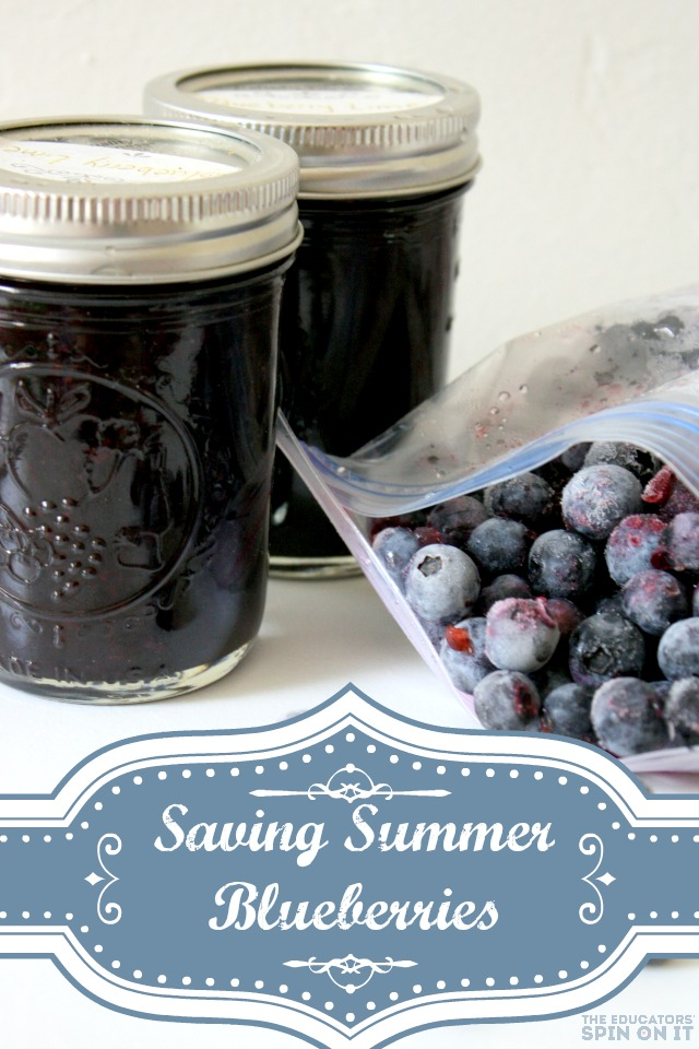 Saving summer with blueberry smoothie packs for the freezer