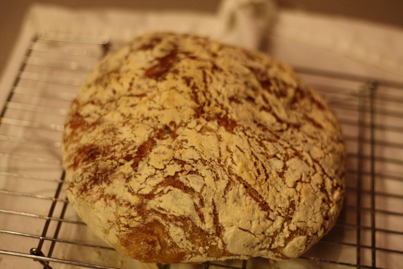 Rye n injun bread