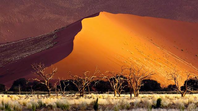 Sand dune, Sossusvlei, Namibia (© Erik Joosten/Minden Pictures) 601