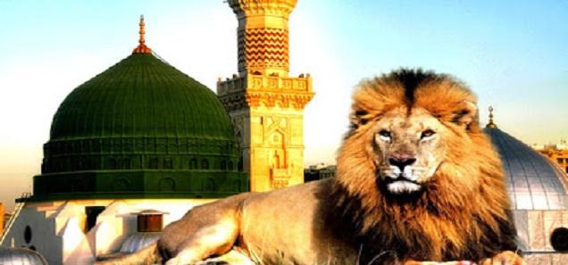 فيديو I شاهد لماذا ستدخل الاسود المسجد النبوي في اخر الزمان