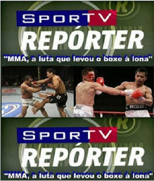 Download MMA O esporte que levou o Boxe à Lona Nacional