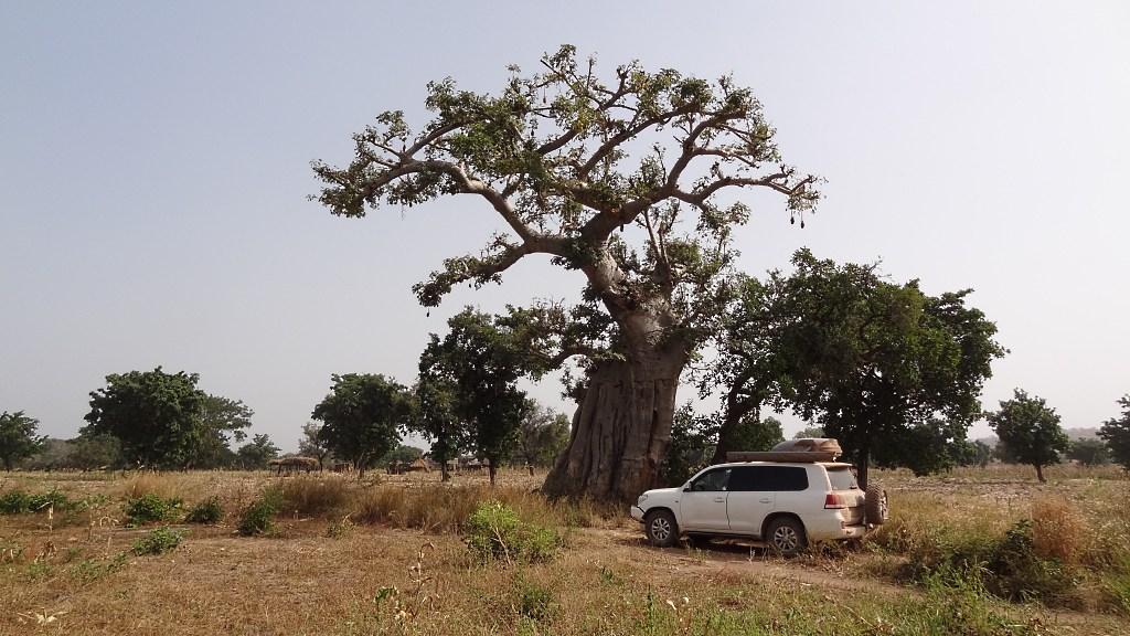Transafrika 4x4 Overland-Trip über die Westküste mit dem Geländewagen