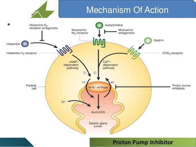 blog keperawatan proton pump inhibitors ppi