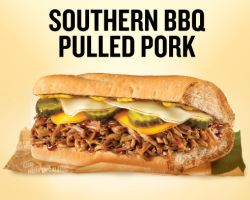 ... southern bbq pulled pork sandwich with pulled pork mozzarella cheddar