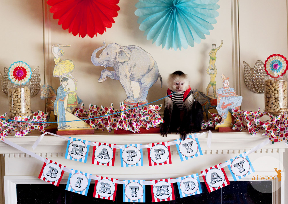 Great Circus Birthday Party Ideas 1000 x 709 · 267 kB · jpeg