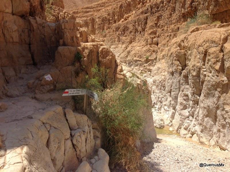 Entrada al cañón seco de Wadi David